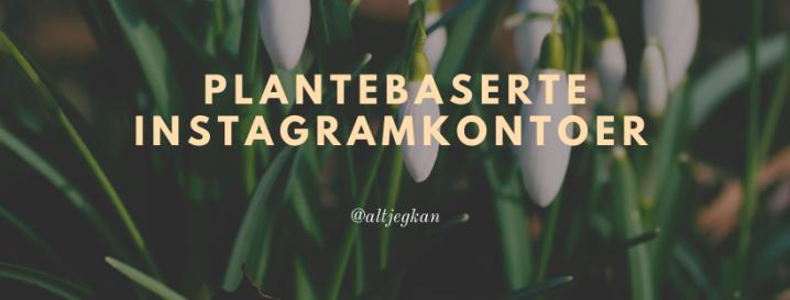 Norske plantebaserte instagramkontoer